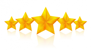 five gold stars -  review us